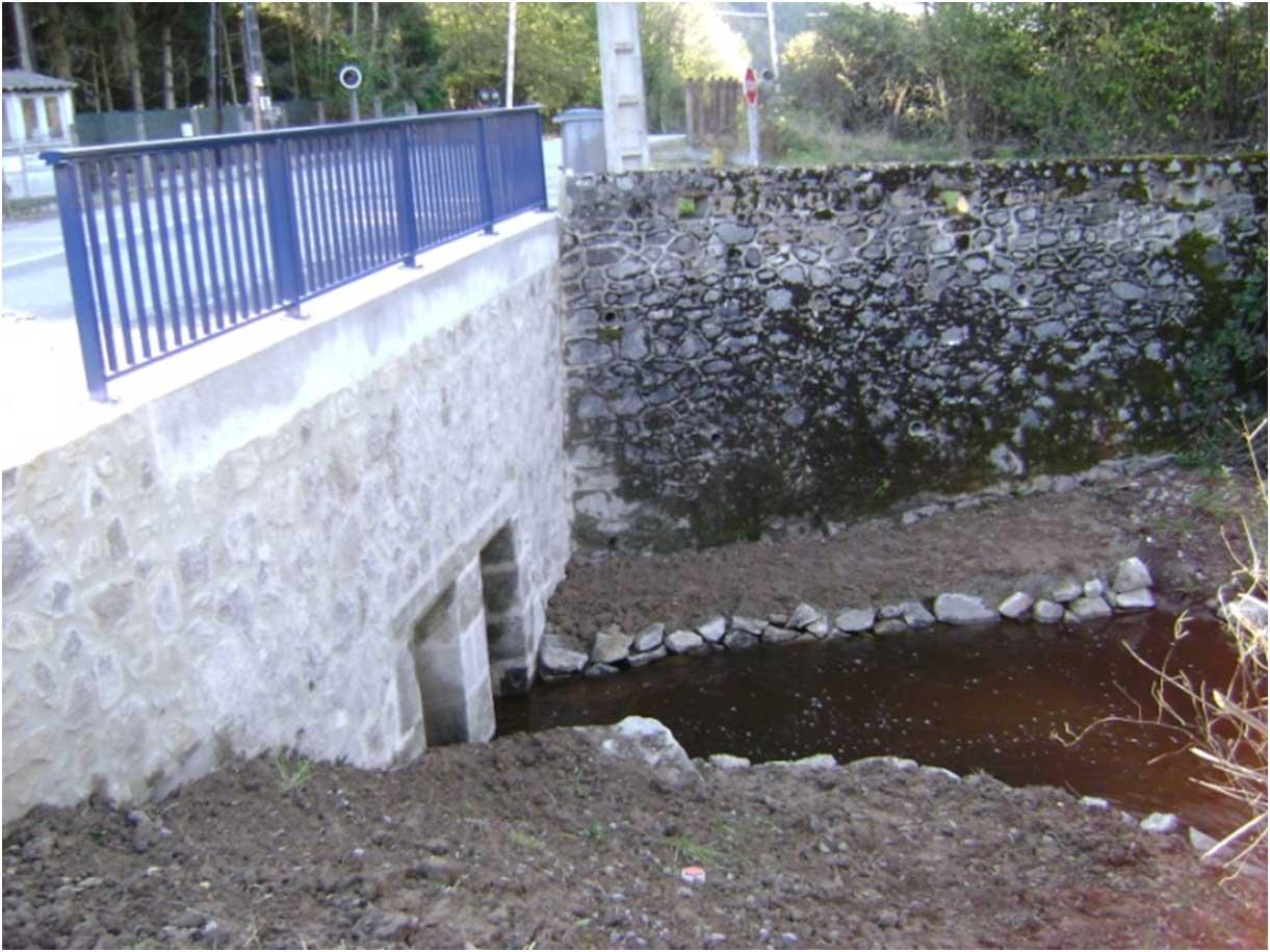 pont-cllide